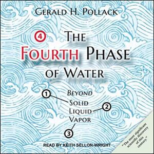 The Fourth Phase of Water