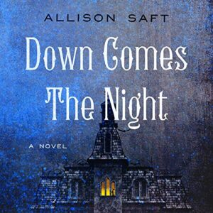 Down Comes the Night: A Novel